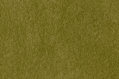 Fabric green synthetic texture Royalty Free Stock Photography