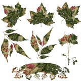 Fabric Leaf Flourish Set Stock Photo