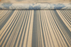 Fabric with lines Royalty Free Stock Image