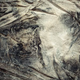Fabric with mold. Texture of old crumpled canvas covered with mold royalty free stock photo