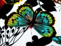 Fabric with painted butterfly Royalty Free Stock Images
