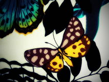 Fabric with painted butterfly Royalty Free Stock Photo