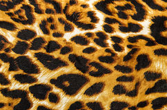 Fabric pattern tiger Stock Photography