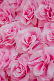 Fabric pink rose Stock Image