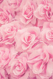 Fabric pink rose. Background in soft filter Royalty Free Stock Photography