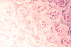Fabric  pink rose Royalty Free Stock Image