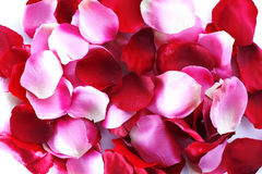 Fabric roses petals Royalty Free Stock Image