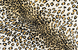 The fabric on striped leopard. On background Stock Images