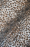 The fabric on striped leopard. On background Royalty Free Stock Photography