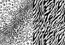 The fabric on striped leopard and zebra. On background Stock Photos