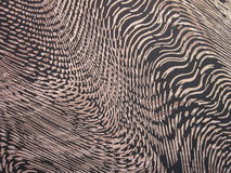 Fabric texture. Can use as background royalty free stock images