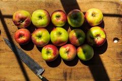 Fabricación de la compota de manzanas de las manzanas orgánicas de McIntosh Foto de archivo libre de regalías