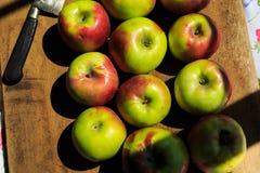 Fabricación de la compota de manzanas de las manzanas orgánicas de McIntosh Imagen de archivo