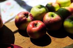 Fabricación de la compota de manzanas de las manzanas orgánicas de McIntosh Fotos de archivo