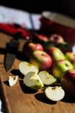 Fabricación de la compota de manzanas de las manzanas orgánicas de McIntosh Fotografía de archivo