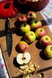 Fabricación de la compota de manzanas de las manzanas orgánicas de McIntosh Imágenes de archivo libres de regalías