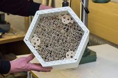 Fabricación de un hotel del insecto fotografía de archivo
