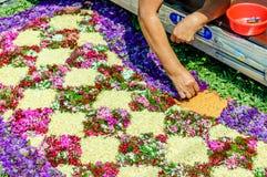 Fabricación de una alfombra de Domingo de Ramos, Antigua, Guatemala Imagen de archivo libre de regalías