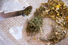 Fabricación del juego de té de la infusión del Manzanilla-estragón Fotografía de archivo