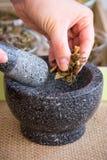 Fabricación del juego de té de la infusión del Manzanilla-estragón Foto de archivo libre de regalías