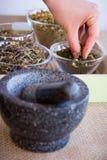 Fabricación del juego de té de la infusión del Manzanilla-estragón Imagen de archivo