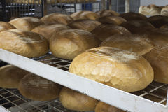 Fabricación del pan Fotografía de archivo