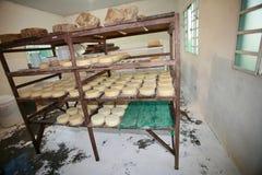 Fabricación del queso artesanal Imagen de archivo libre de regalías