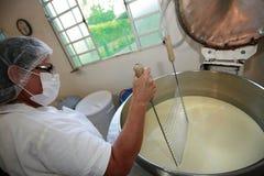 Fabricación del queso artesanal Imágenes de archivo libres de regalías
