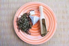 Fabricación del té verde con el sistema del ginseng y del sabio Imagen de archivo libre de regalías