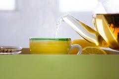 Fabricación del té verde con el sistema del ginseng y del sabio Foto de archivo