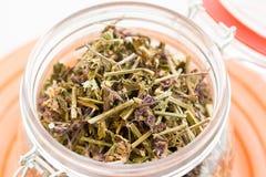 Fabricación del té verde con el sistema del ginseng y del sabio Imagenes de archivo