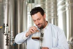 Fabricante de cerveja da cerveja em sua cervejaria que examina Fotos de Stock Royalty Free
