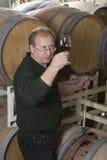 Fabricante de vino Imagen de archivo