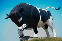 Bull - símbolo del ganado imagen de archivo libre de regalías