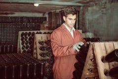 Fabricante del vino que toma el cuidado de las botellas del condimento Imágenes de archivo libres de regalías