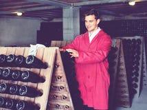 Fabricante del vino que toma el cuidado de las botellas del condimento Imagen de archivo libre de regalías
