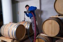 Fabricante do vinho da adega de vinho imagens de stock