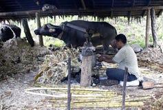 Fabricante vermelho tradicional do açúcar fotografia de stock