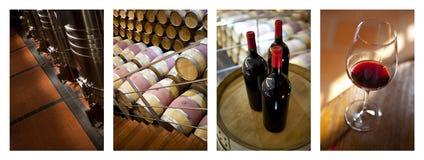 Fabrication de l'étape de vin deuxièmes Photos stock