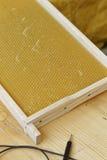 Fabrication de nid d'abeilles Images libres de droits