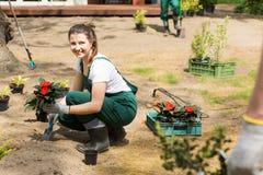 Fabrication des premières étapes pour arranger un jardin renversant Photographie stock libre de droits