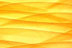 Fabrics background Stock Image