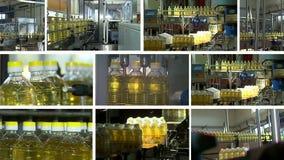 Fabriek voor de productie van geraffineerde zonnebloemolie stock video