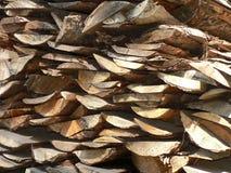 Fabriek voor verwerking van hout Royalty-vrije Stock Fotografie