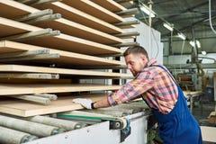 Fabrieksarbeider Stacking Wood in Workshop royalty-vrije stock afbeelding