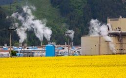 Fabrik Mondi in der Stadt Ruzomberok, Slowakei Lizenzfreie Stockbilder