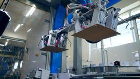 Fabriksapparater fungerar med papp p? en r?rande transport?r lager videofilmer