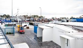 fabriksfiskport royaltyfria bilder