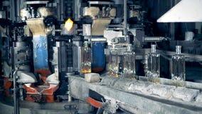 Fabriksproduktionsprocess av genomskinliga glas- flaskor lager videofilmer
