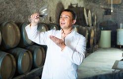 Fabrikssommelier som kontrollerar kvalitet av vin Fotografering för Bildbyråer